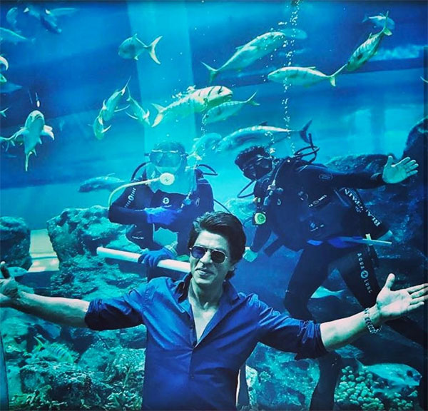 Shah Rukh Khan is seen in his signature romantic pose against the backdrop of a large aquarium