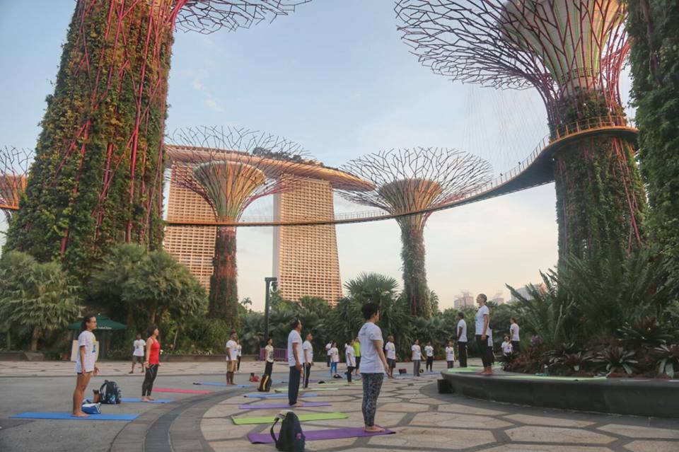 IDY session held at the beautiful Gardens by The Bay. Photo courtesy: India High Commission of Singapore Facebook