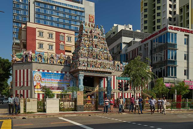 Photo courtesy: roots.sg