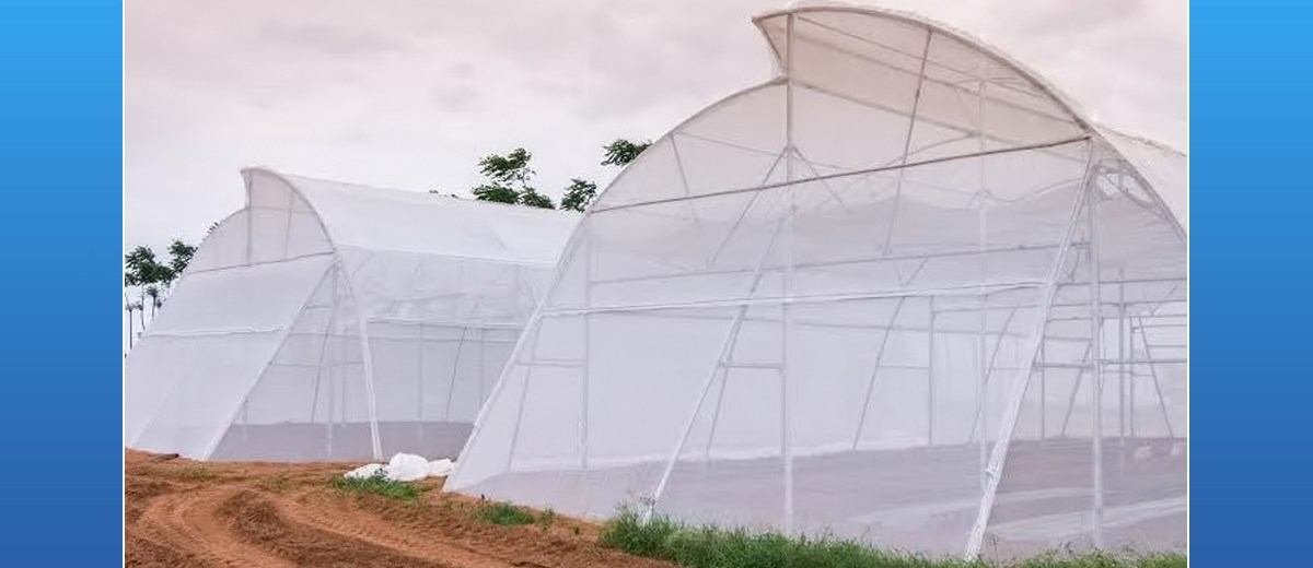 Hyderabad-based startup Kheyti has developed a unique 'greenhouse-in-a-box'.