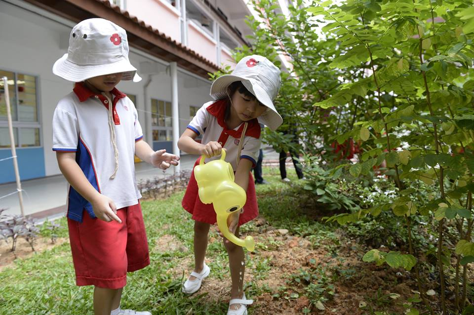 Personality of children blooms when they are brought close to Nature.