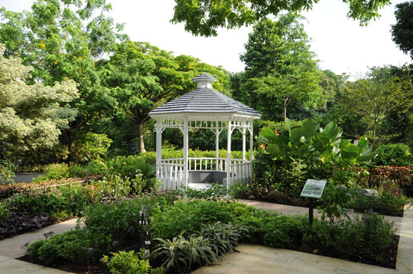 More public gardening plots will be made available for people in Singapore,