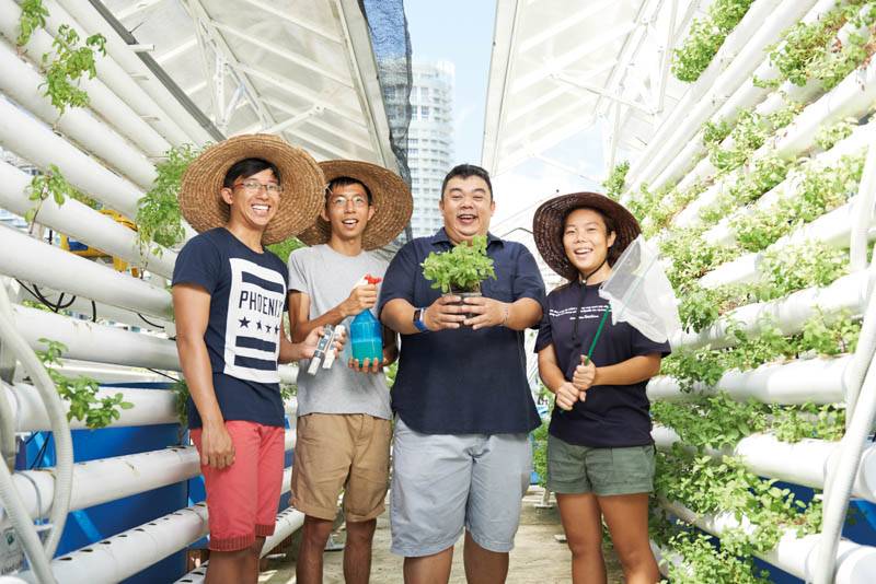 The enhanced LUSH programme will encourage more Singaporean people to take up urban farming and gardening near their offices and homes.