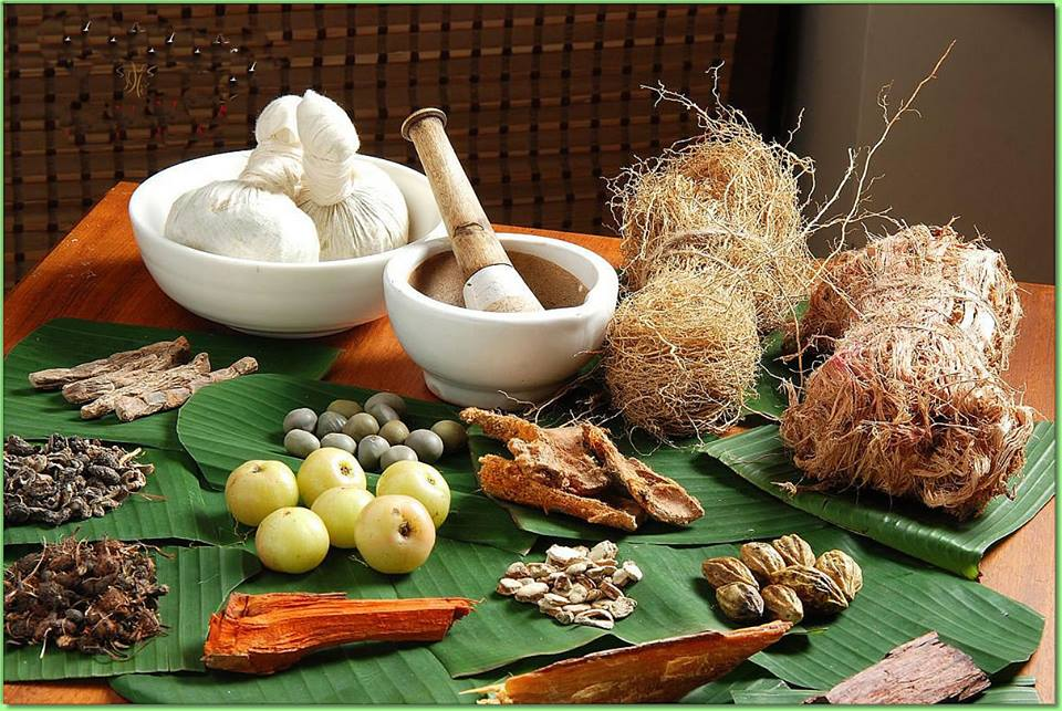 Conferences and discussions will highlight the effectiveness of Ayurveda as a treatment option.