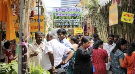 Celebrate harvest with the Singapore Tamil community