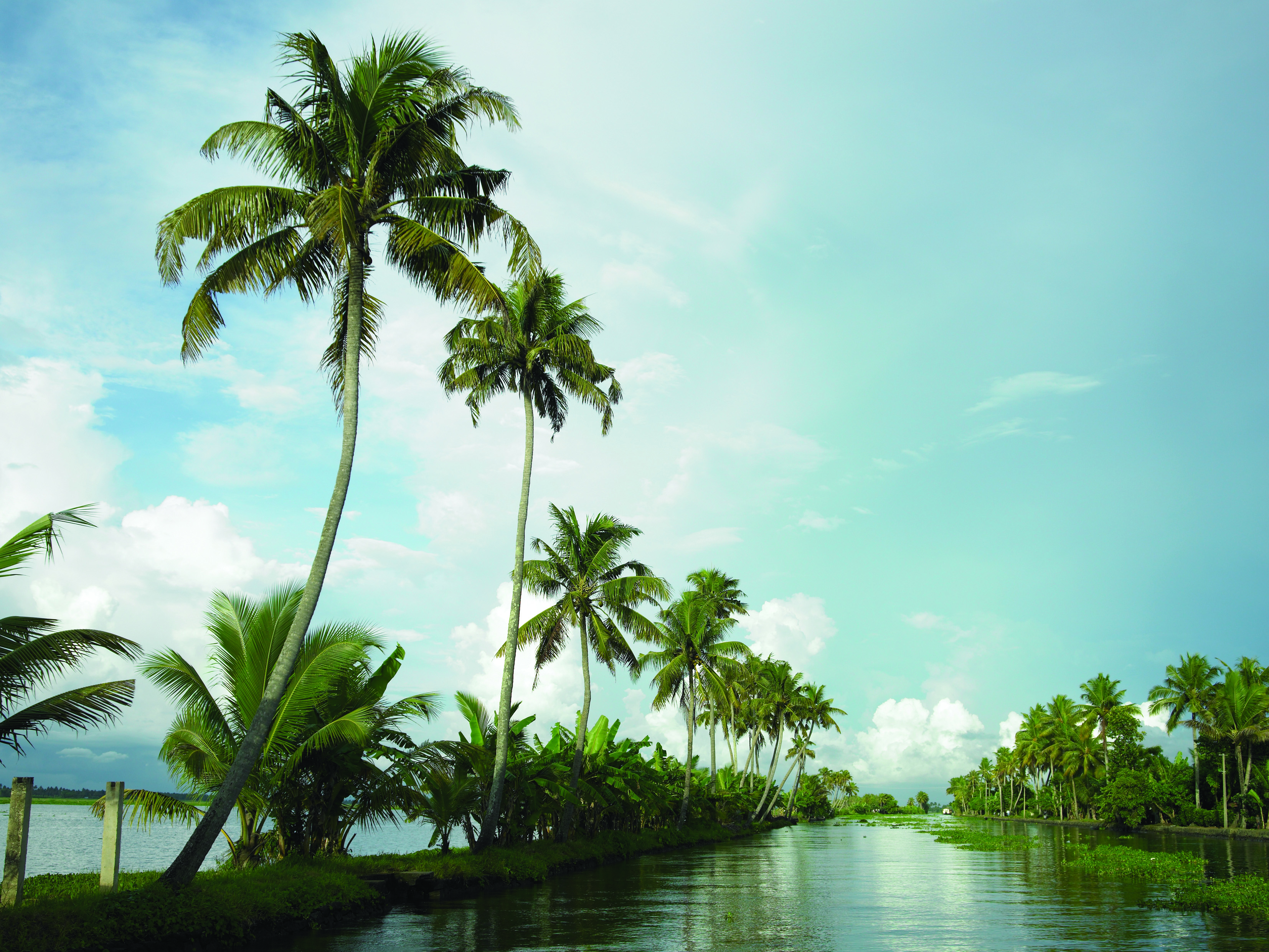 best 5 amazing things to do kerala india connected to india