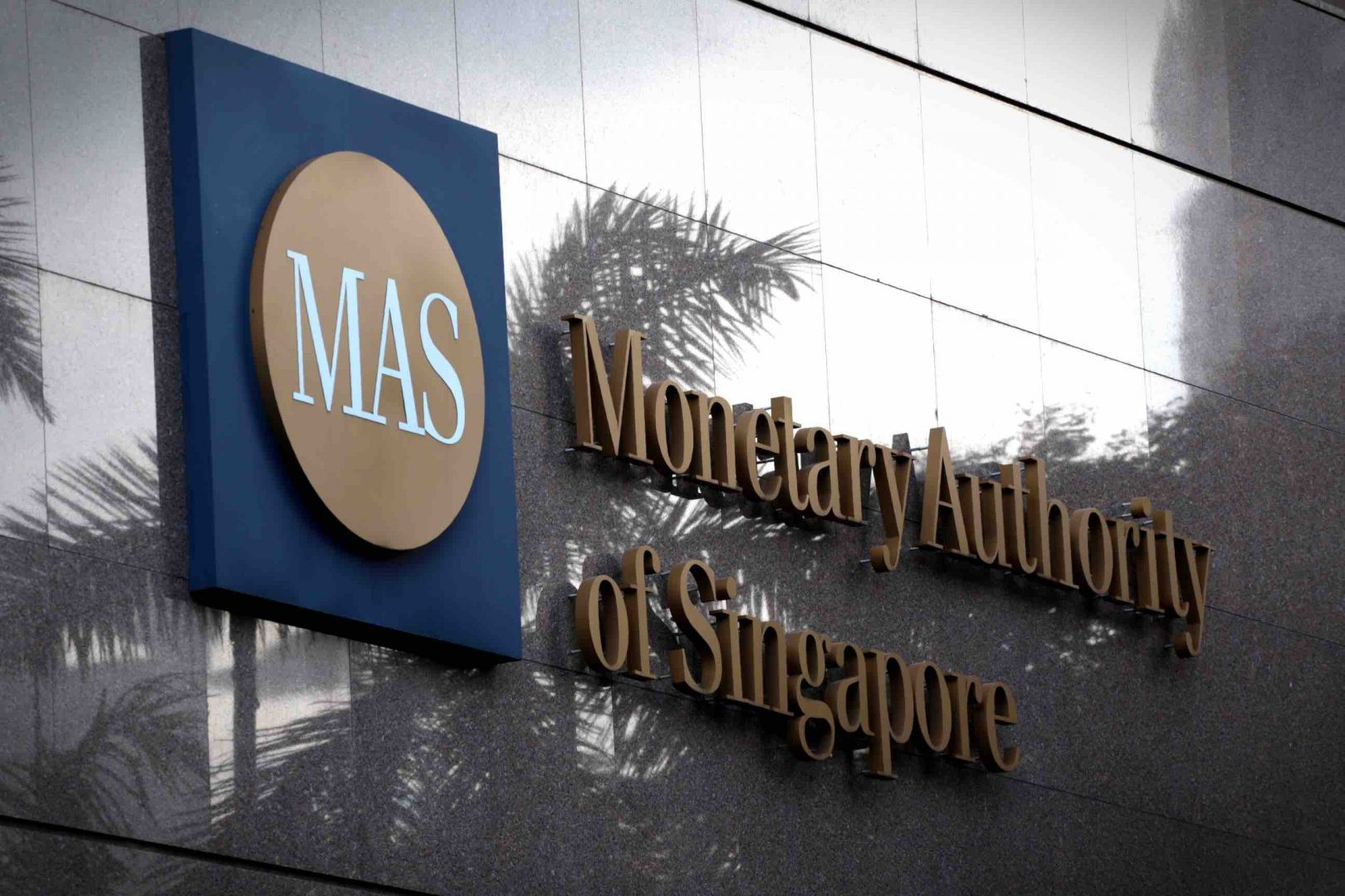 MAS predicts that the turnaround in the global IT cycle will continue to benefit Singapore's domestic semiconductor and precision engineering industries