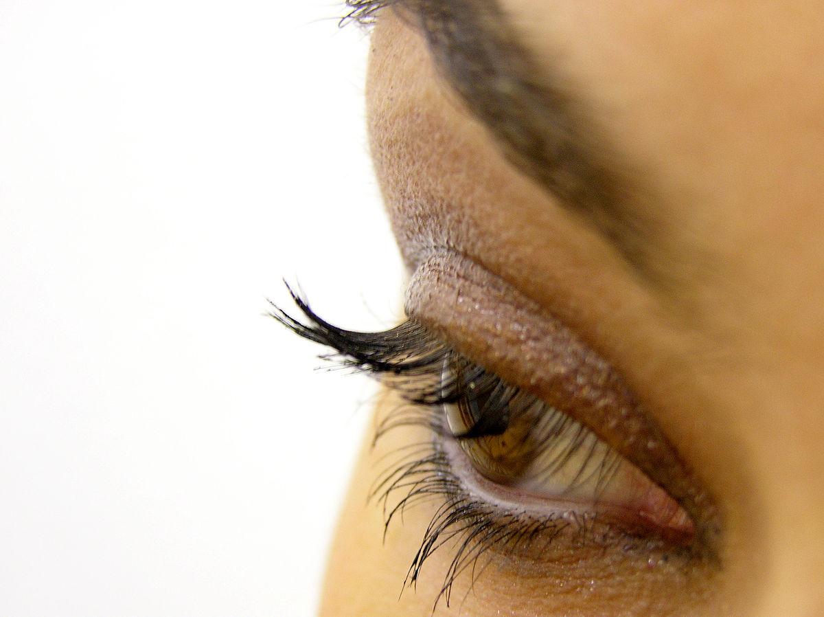 Eye. Photo courtesy: Wiki