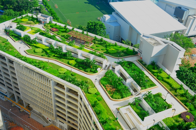 More urban farms and  rooftop gardens will be visible in Singapore with 'LUSH' programme.