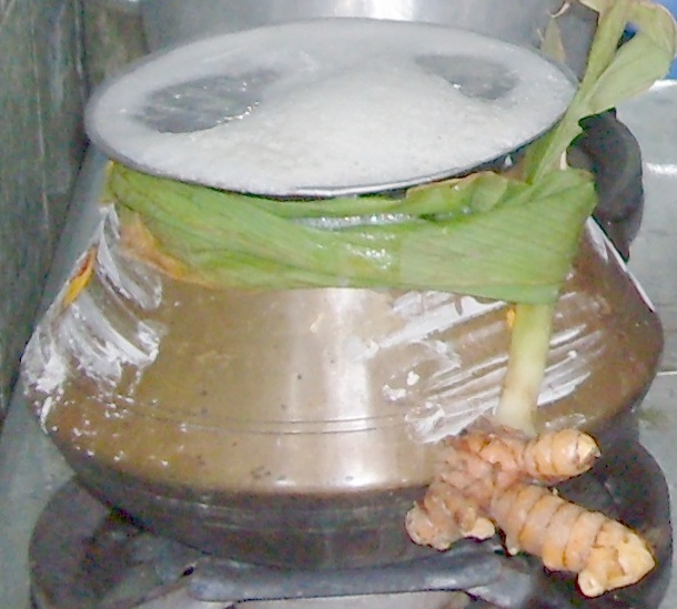 A pot of steaming rice for Pongal.