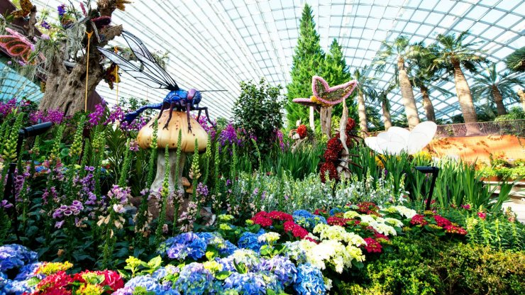 Gardens by the Bay welcomes Lunar New Year with assorted floral display.