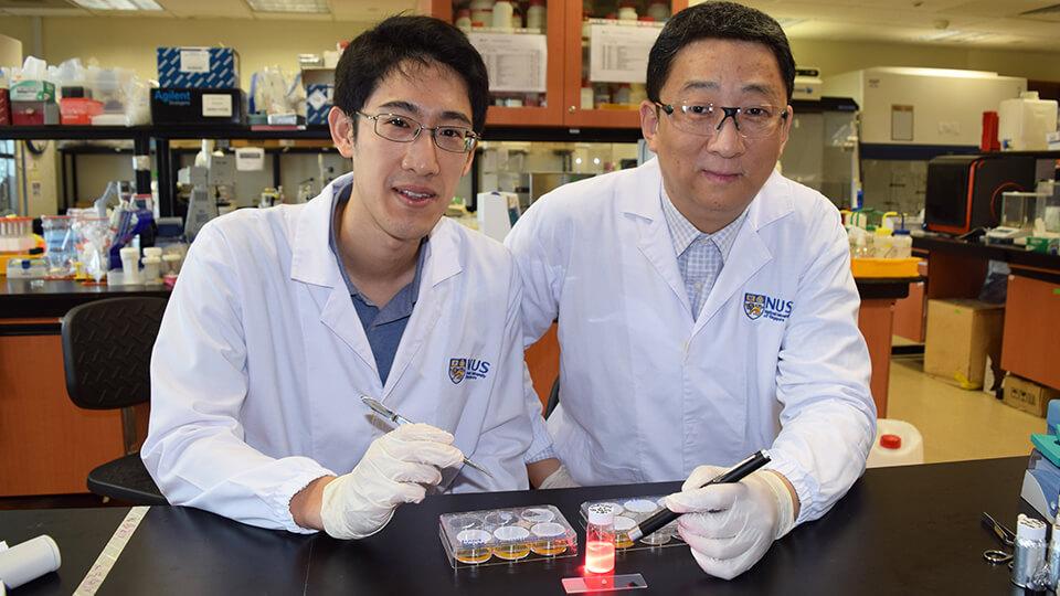 Assistant Professor John Ho and Professor Zhang Yong. Photo courtesy: NUS