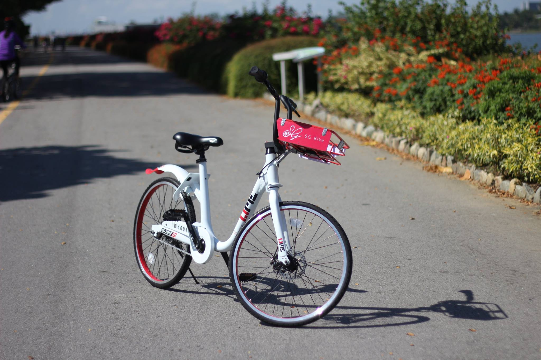 Photo courtesy: SG bike