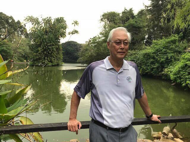 Emeritus Senior Minister Goh Chok Tong