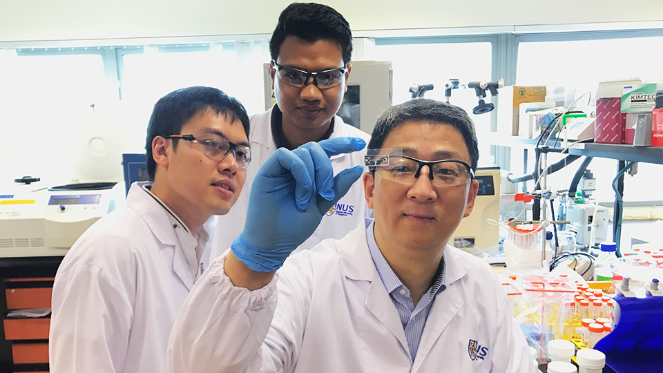 NUS Engineering researchers have developed a low-cost microfluidic chip that can quickly and accurately detect and quantify nano-bioparticles using only a standard laboratory microscope without any fluorescent labels. Photo courtesy: NUS