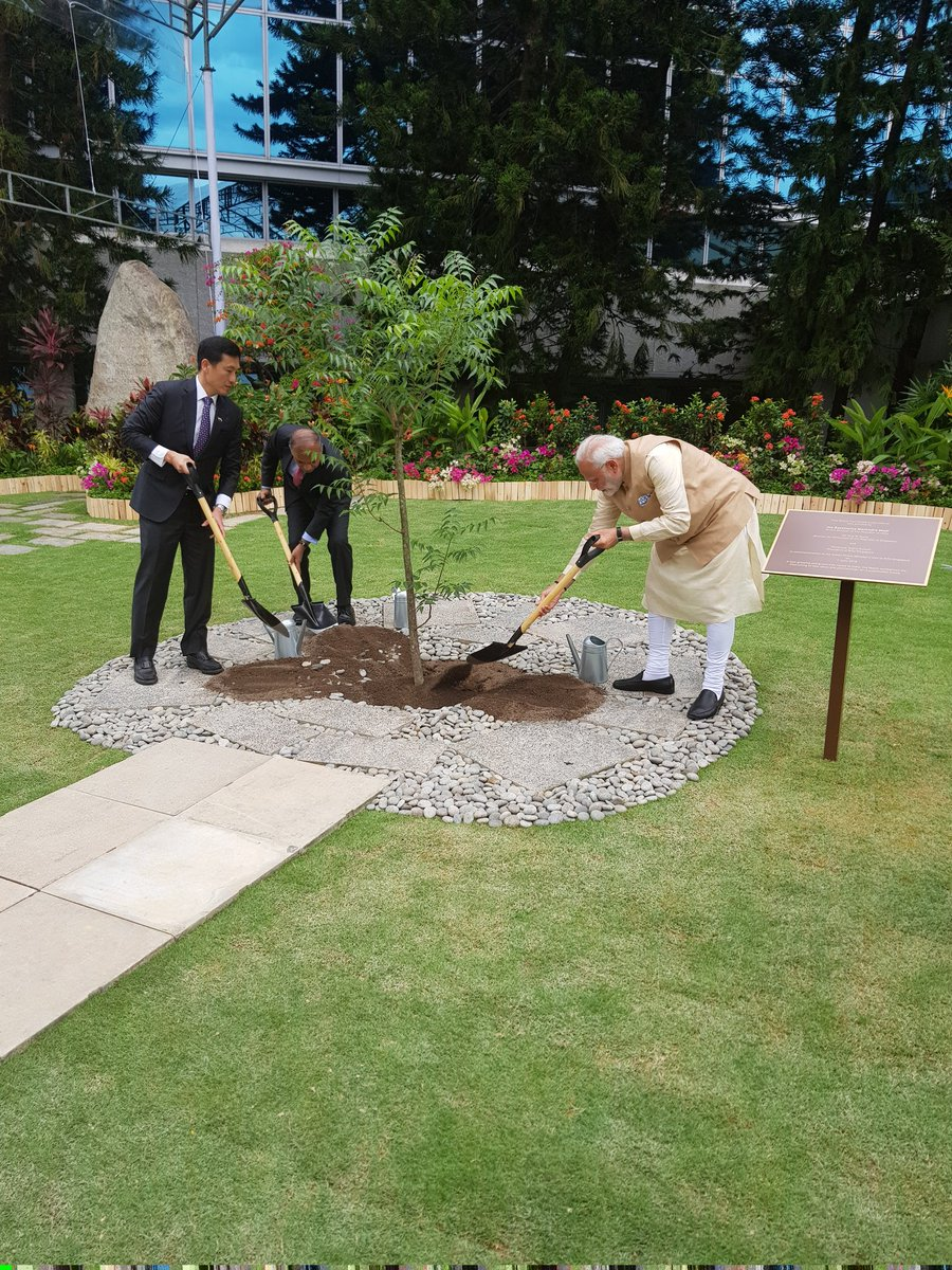 A neem tree was planted in the Nanyang Technical University campus by PM Modi, Singapore Minister of Education Ong Kung and President NTU Subra Suresh to commemorate the visit of Indian Prime Minister in the University.