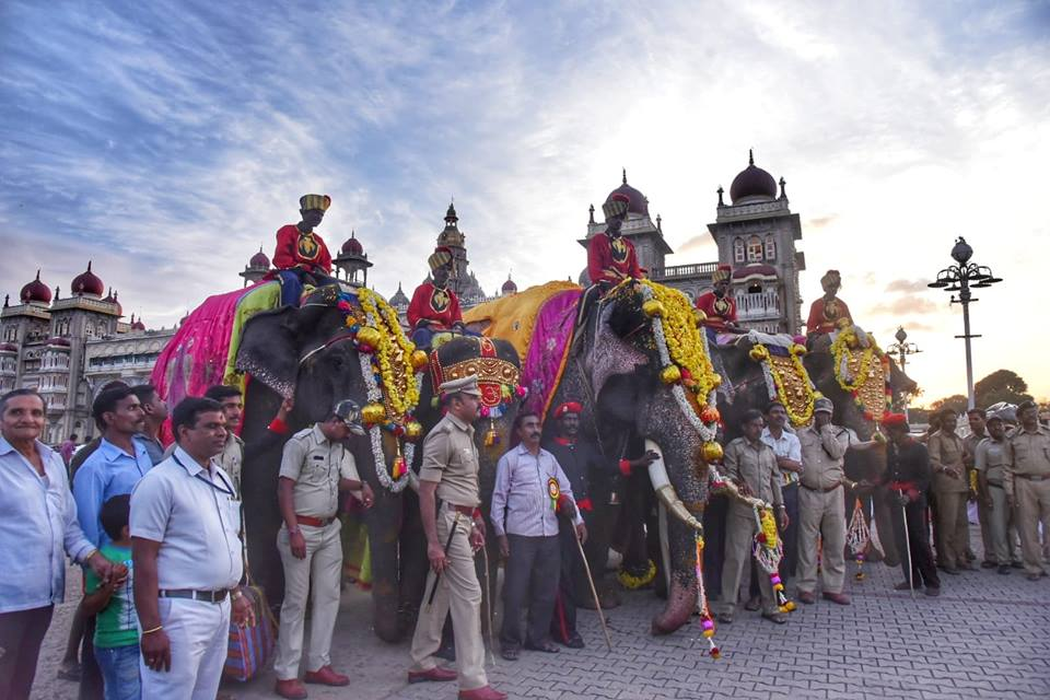 Elephants form an integral part of the procession giving a peep into the pompness and glory of Mysuru's Dasera. Photo courtesy: karnatakatourism.org