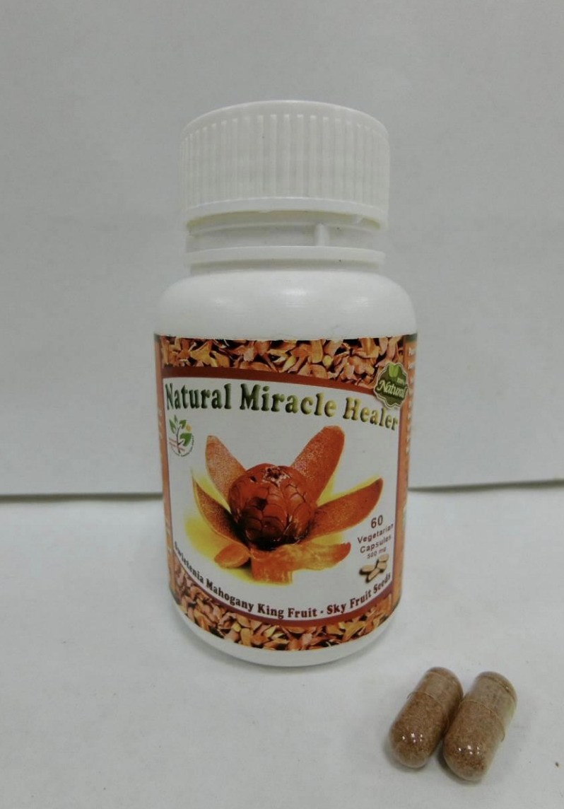 'Natural Miracle Healer' – mahogany seed capsules. Photo courtesy: HSA