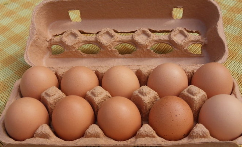 Last year, egg imports from Malaysia made up 73 per cent of Singapore's egg consumption. Photo courtesy: Wikipedia