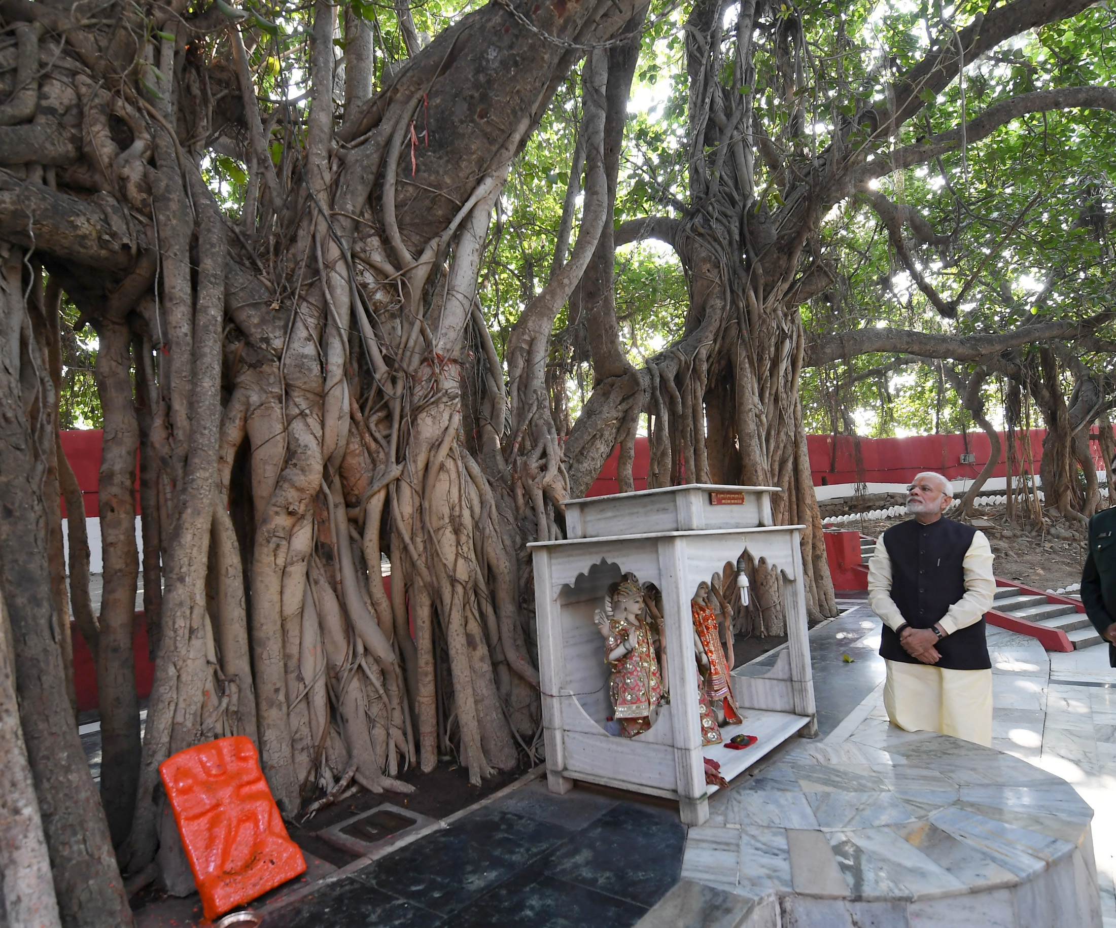 Prime Minister Narendra Modi admiring an ancient tree at Akshayvat, at Prayagraj, in Uttar Pradesh.  (Photo courtesy: PMO