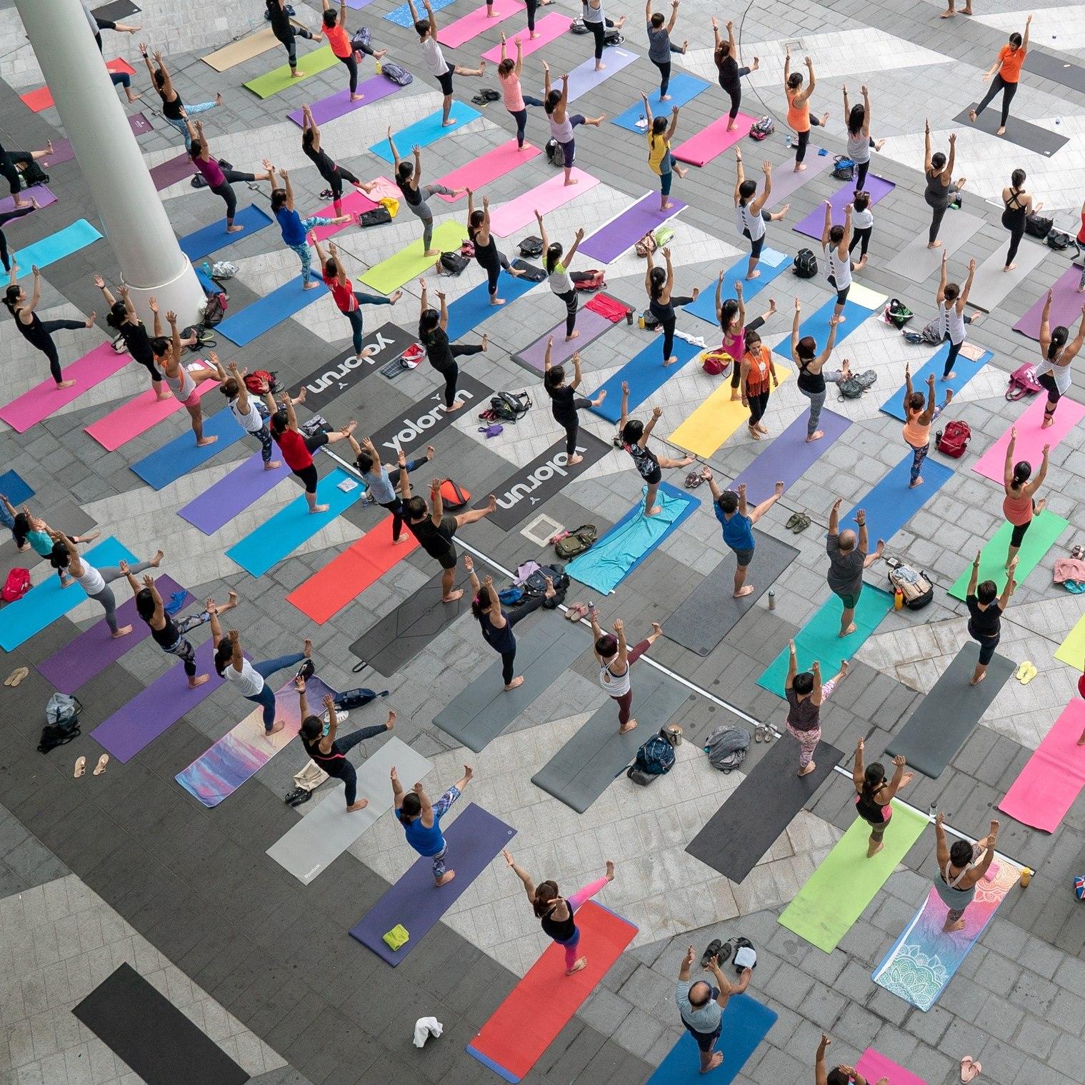 Photo courtesy: Platinum Yoga