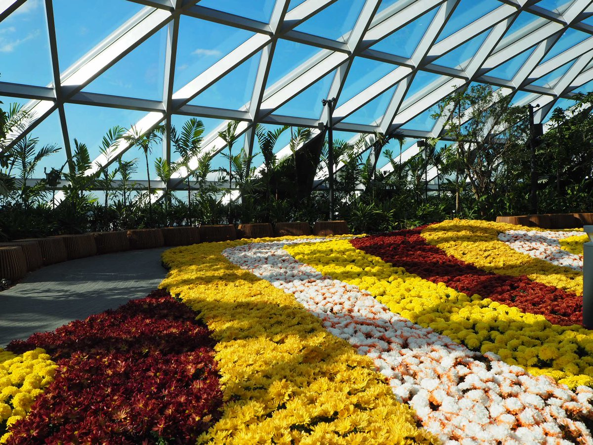 Canopy Park which is located at the top level features more gardens and leisure facilities. Photo courtesy: Twitter page of Changi Airport