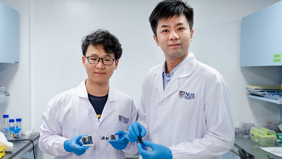 NUS Assistant Professor Chen Po-Yen (right) and doctoral student Yang Haitao (left) and their team created a new metallic material for soft and flexible robots. Photo courtesy: NUS
