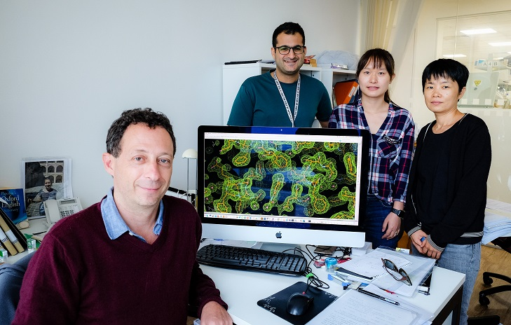 A group of scientists from NTU have found a potential new route to disabling viruses that cause severe and life-threatening respiratory diseases such as pneumonia and bronchiolitis. Photo courtesy: NTU