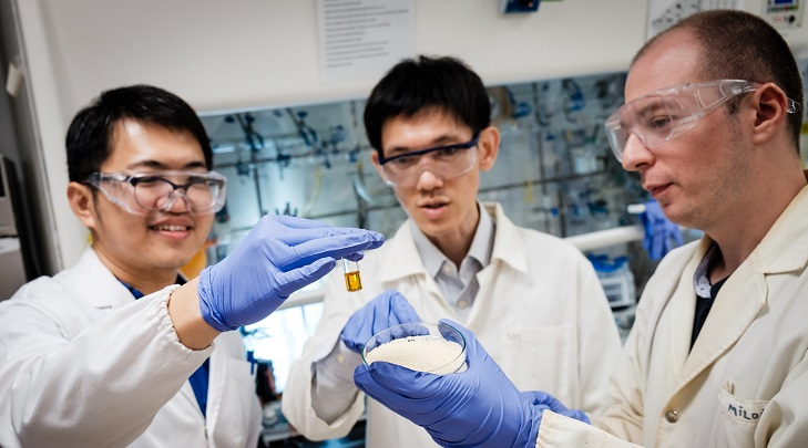 Chemists at NTU have discovered a method to turn plastic waste into valuable chemicals using sunlight. Photo courtesy: NTU