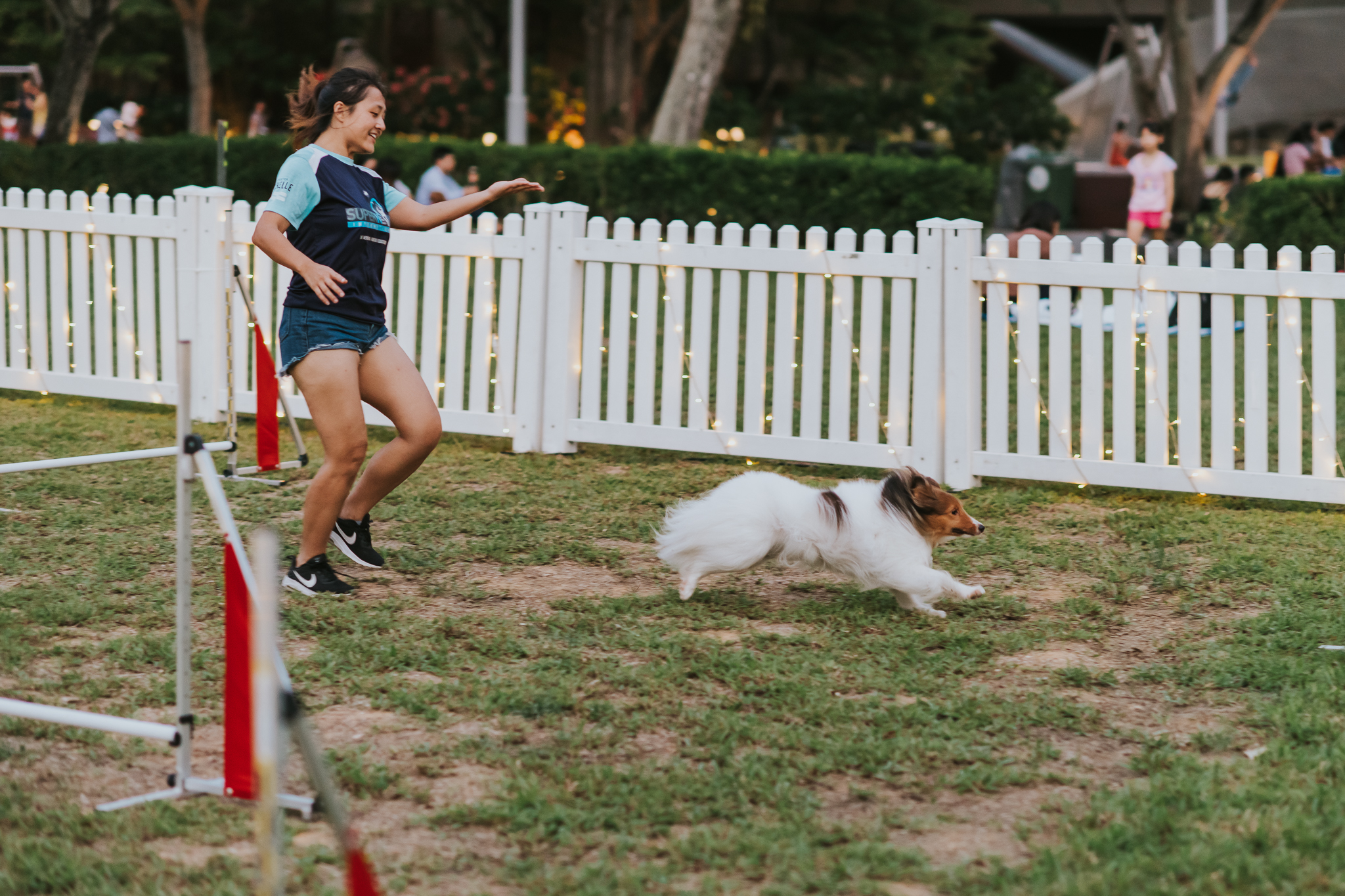 It's a PAW-ty at Connaught Drive, with a line-up of pet activities and competitions throughout the day – including an agility park, obstacle race and a doggy free-run area. Photo courtesy: Urban Redevelopment Authority