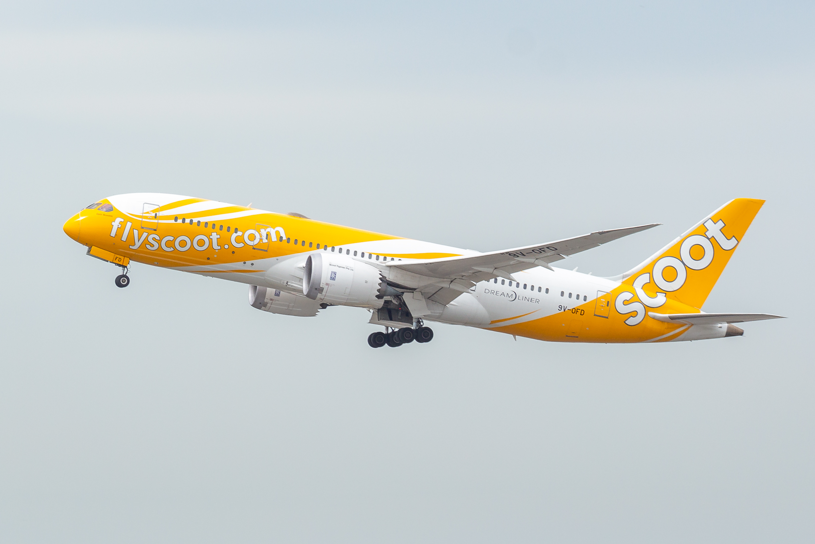 92 Singaporeans were brought back from Wuhan via a specially chartered Scoot flight. Photo courtesy: Wikimedia