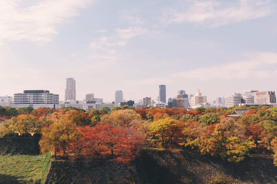 Osaka. Photo: Connected to India