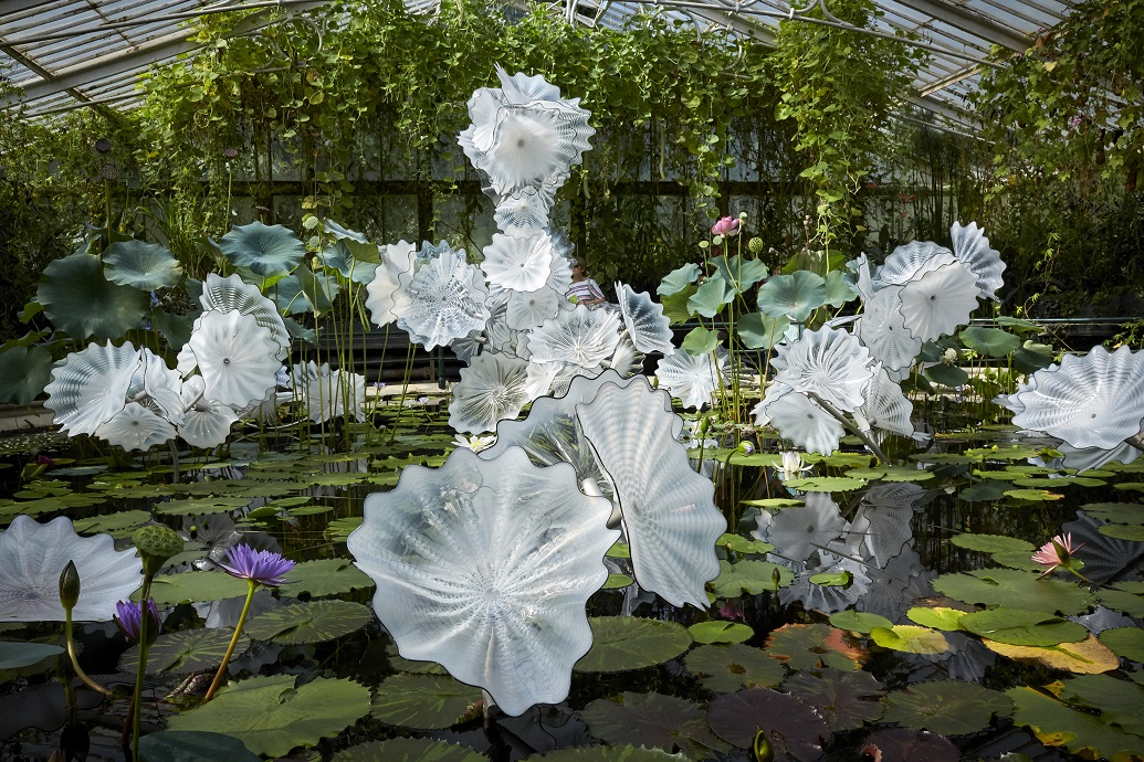 Dale Chihuly Ethereal White Persian Pond (detail), 2018 Royal Botanic Gardens, Kew, London, installed 2019 © Chihuly Studio. All Rights Reserved.