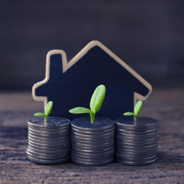 Six Investment Plans in India You Can Benefit From as an NRI