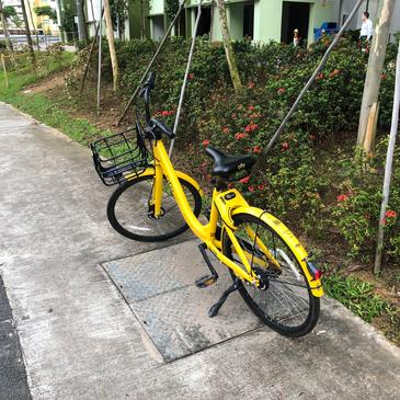 Ofo granted extension to remove bikes from public spaces, may tie up with another party