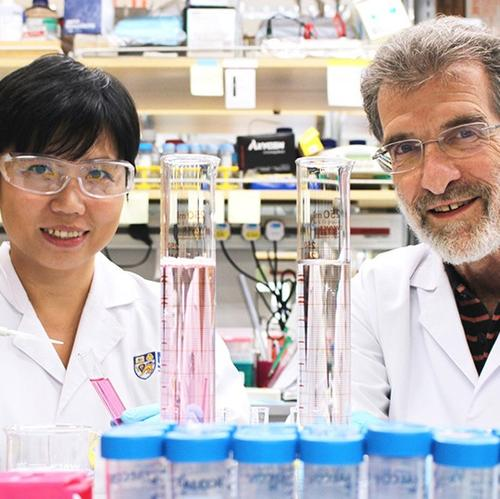 NUS and Harvard develop novel drug that could treat liver cancer with less side efects